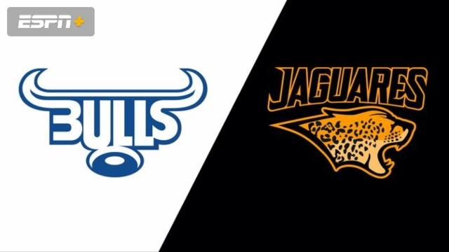 Bulls vs. Jaguares (Super Rugby)