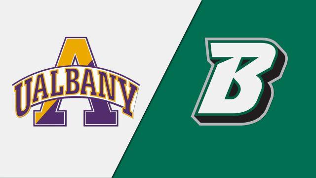 Albany vs. Binghamton (M Lacrosse)