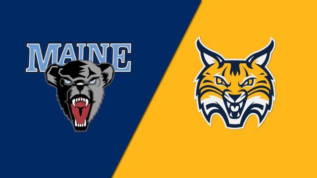 Maine vs. Quinnipiac (M Basketball)