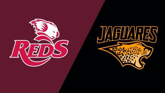 Reds vs. Jaguares (Super Rugby)