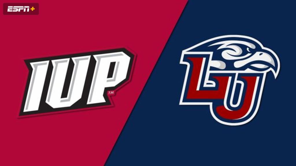 Indiana (PA) vs. Liberty (M Hockey)