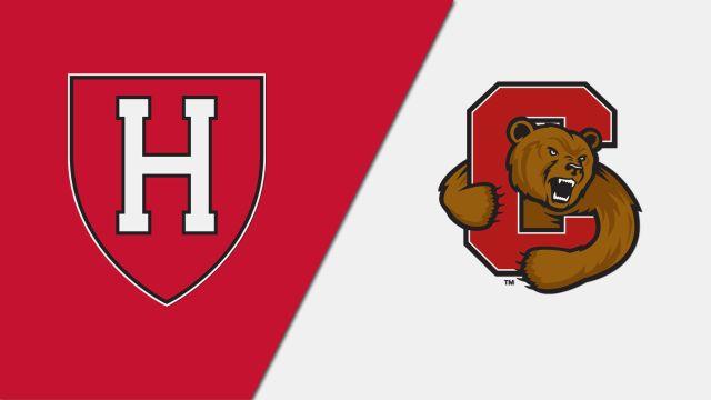 Harvard vs. #7 Cornell (W Hockey)