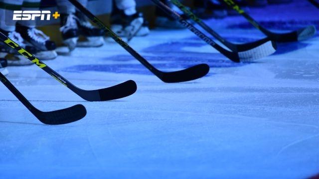 Nipissing vs. Cornell (M Hockey)