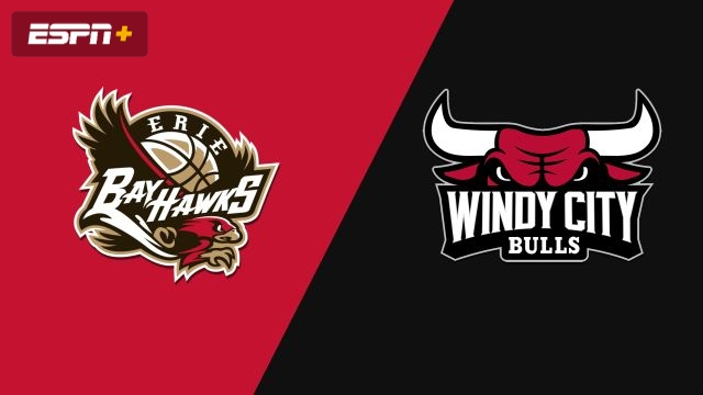 Erie BayHawks vs. Windy City Bulls