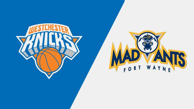 Westchester Knicks vs. Fort Wayne Mad Ants