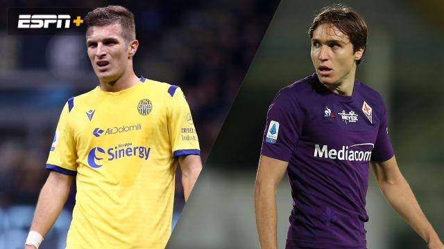 Hellas Verona vs. Fiorentina (Serie A)