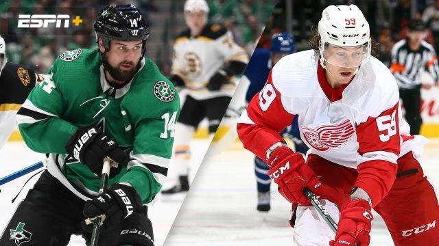 Dallas Stars vs. Detroit Red Wings