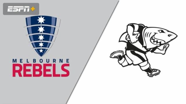 Rebels vs. Sharks (Super Rugby)