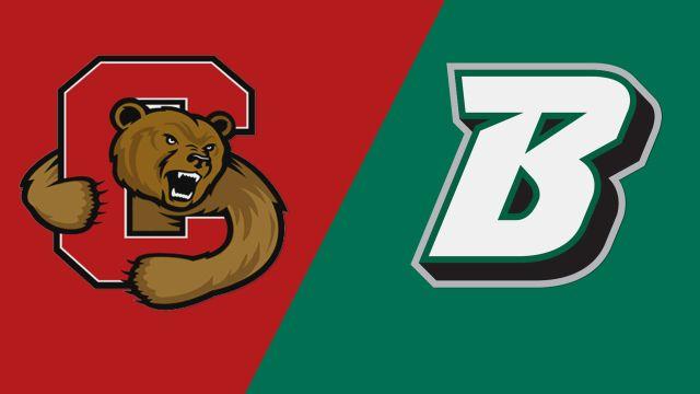 Cornell vs. Binghamton (W Lacrosse)