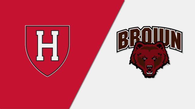 Harvard vs. Brown (M Basketball)