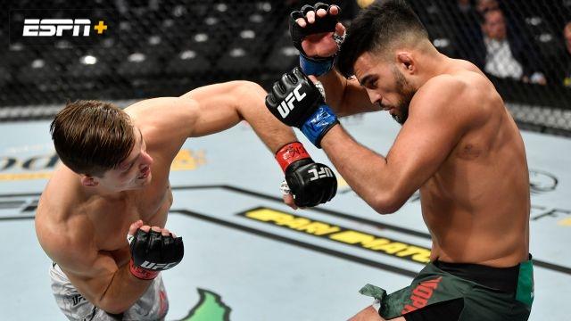 Drew Dober vs. Nasrat Haqparast (UFC 246)