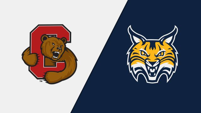 #6 Cornell vs. Quinnipiac (W Hockey)