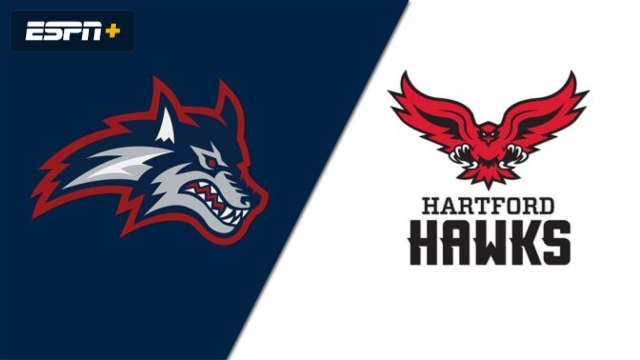 Stony Brook vs. Hartford (W Basketball)