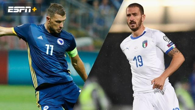 Bosnia-Herzegovina vs. Italy (UEFA European Qualifiers)