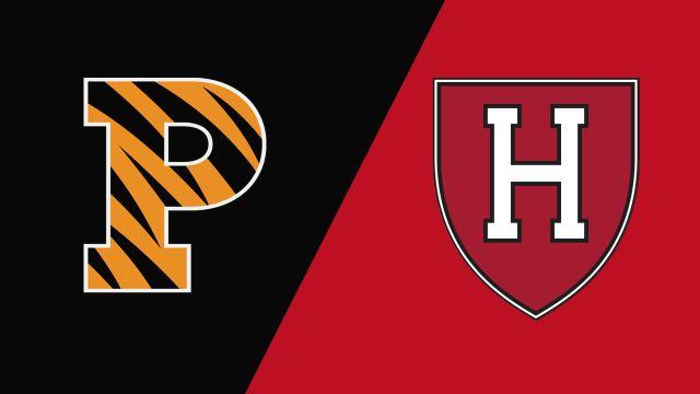 Princeton vs. Harvard (M Lacrosse)