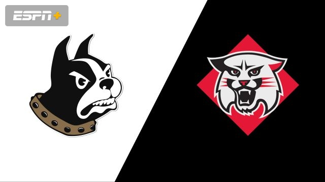 Wofford vs. Davidson (W Volleyball)