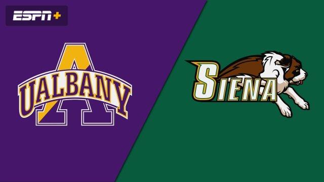 Albany vs. Siena (W Volleyball)