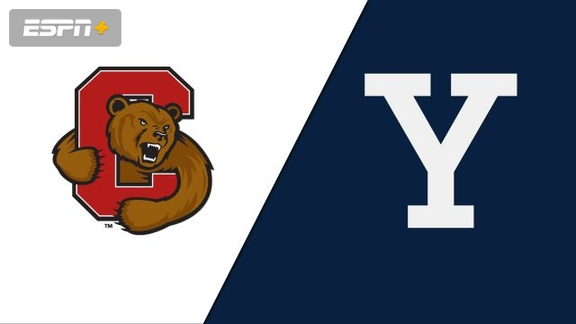 Cornell vs. Yale (W Volleyball)
