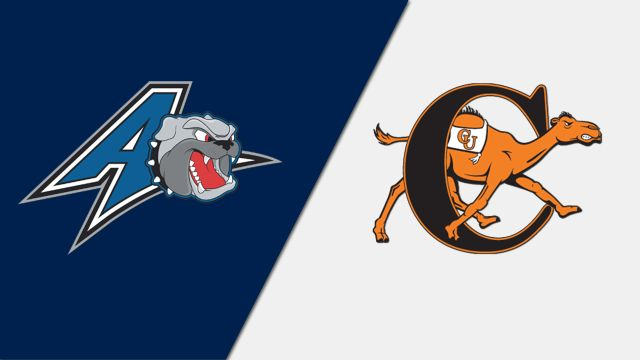 UNC Asheville vs. Campbell (Baseball)
