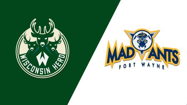 Wisconsin Herd vs. Fort Wayne Mad Ants