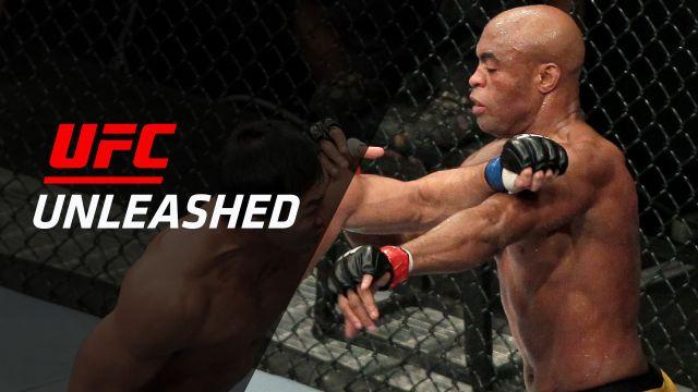 Anderson Silva vs. Yushin Okami