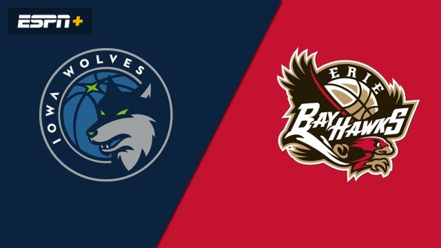 Iowa Wolves vs. Erie BayHawks