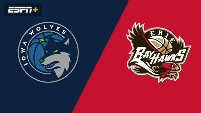 Iowa Wolves vs. Erie BayHawks