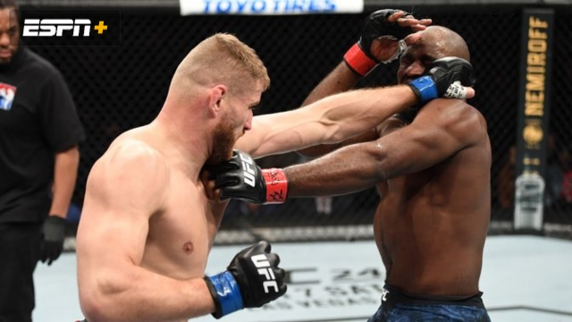 In Spanish - Corey Anderson vs. Jan Blachowicz  (UFC Fight Night: Anderson vs. Blachowicz 2)