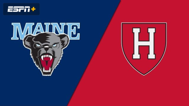 Maine vs. Harvard