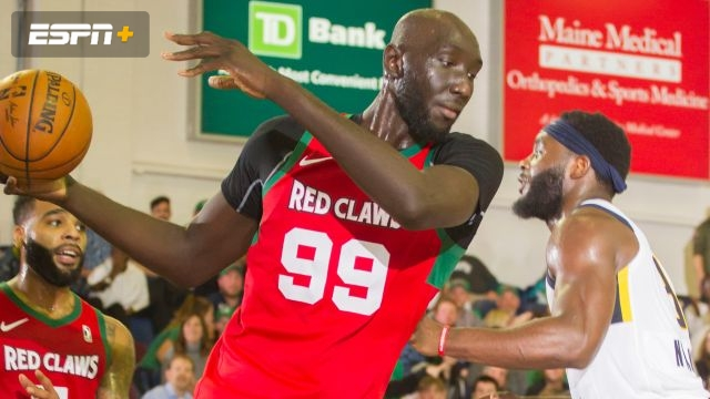 Maine Red Claws vs. Raptors 905