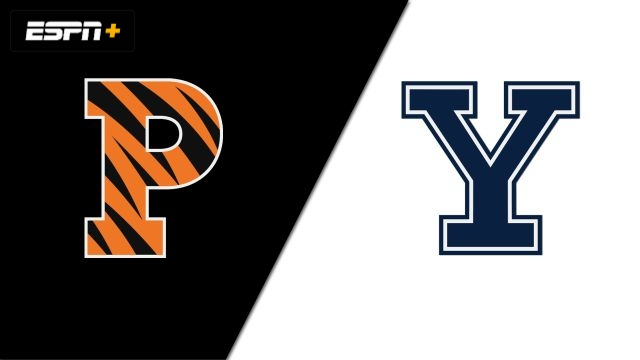 Princeton vs. Yale (W Volleyball)