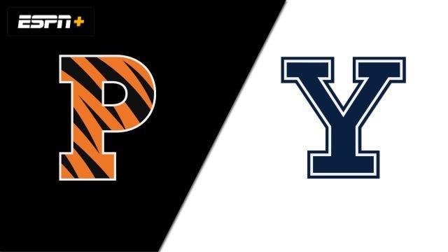 Princeton vs. Yale (W Volleyball)