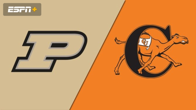 Purdue vs. Campbell (Baseball)
