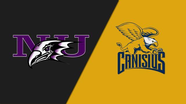 Niagara vs. Canisius (W Lacrosse)