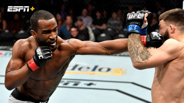 Geoff Neal vs. Mike Perry (UFC 245)
