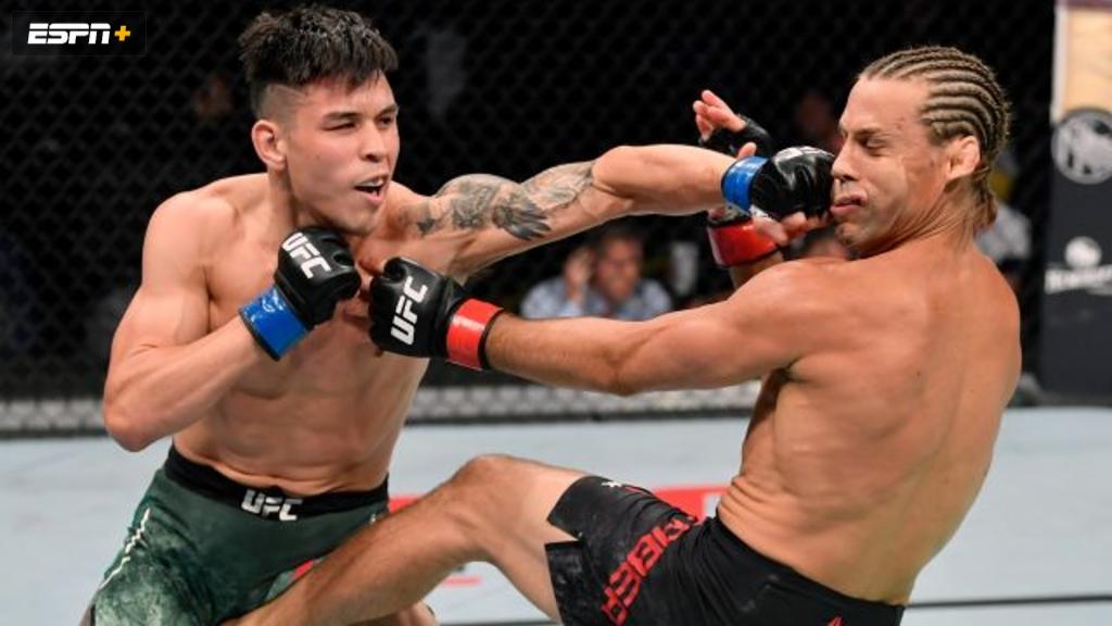 UFC Fight Night: de Randamie vs. Ladd (Main Card)