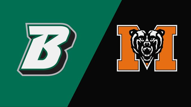 Binghamton vs. Mercer (Baseball)