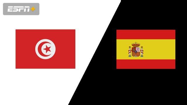 Tunisia vs. Spain (Group Phase)