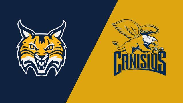 Quinnipiac vs. Canisius (W Basketball)