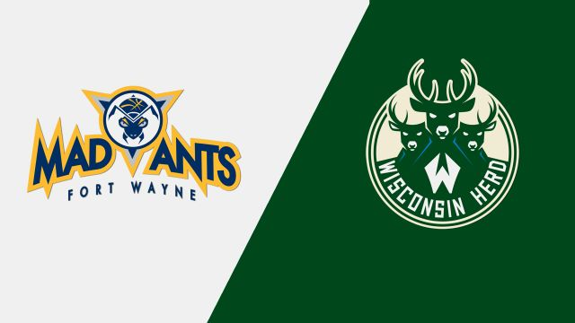 Fort Wayne Mad Ants vs. Wisconsin Herd