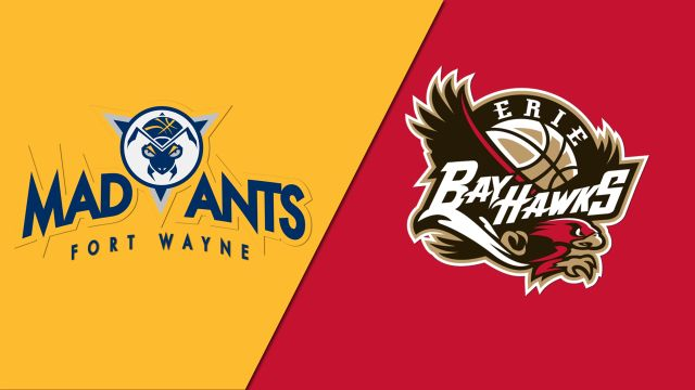 Fort Wayne Mad Ants vs. Erie BayHawks