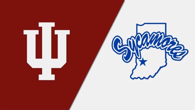 Indiana vs. Indiana State (Baseball)