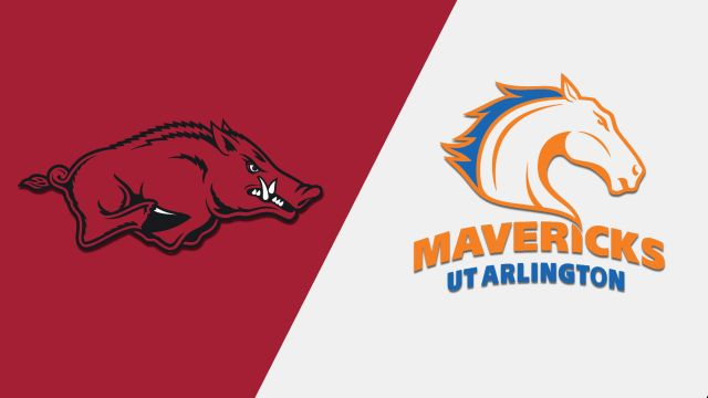 Arkansas vs. UT Arlington (W Basketball)