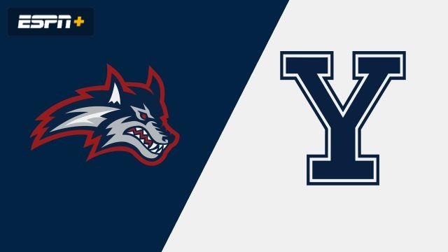 Stony Brook vs. Yale (W Volleyball)