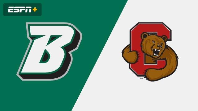 Binghamton vs. Cornell (W Soccer)