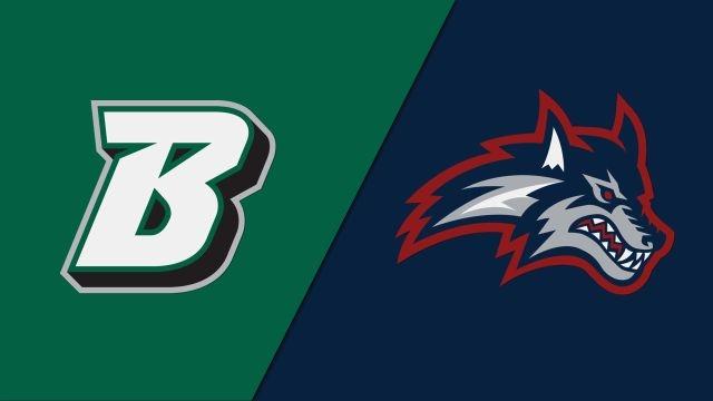 Binghamton vs. Stony Brook (Championship) (Baseball)