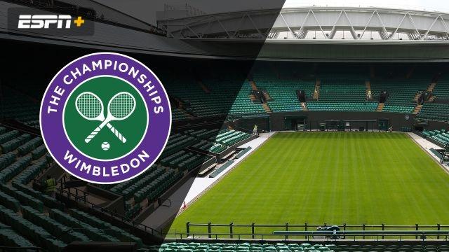 Bartoli/Hantuchova vs. Black/Navratilova (Ladies' Invitation Doubles Final)