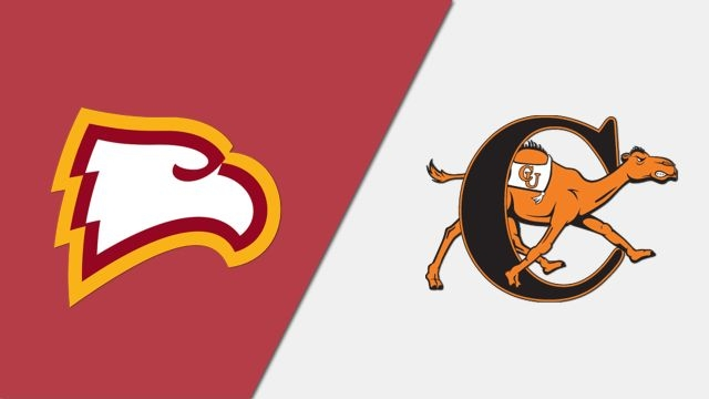 Winthrop vs. Campbell (Game 11) (Baseball)