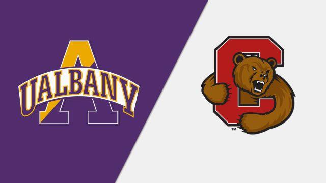Albany vs. #22 Cornell (M Soccer)